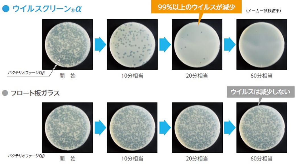 ウイルス抑制効果の実験結果